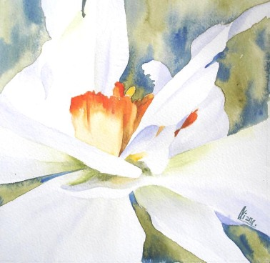 narcisse01 aquareliane