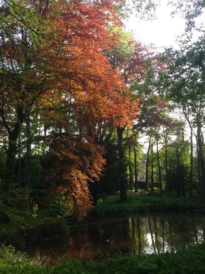 parc Brel
