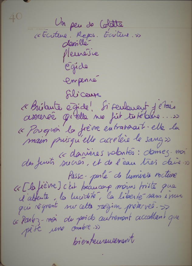 2020_plumefragileColette (2)